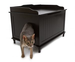 Дизайнерский туалет для кота