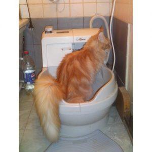 Автоматизированный унитаз для кошек Catgenie