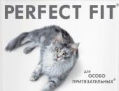 Миниатюра к статье Обзор корма для кошек Перфект Фит